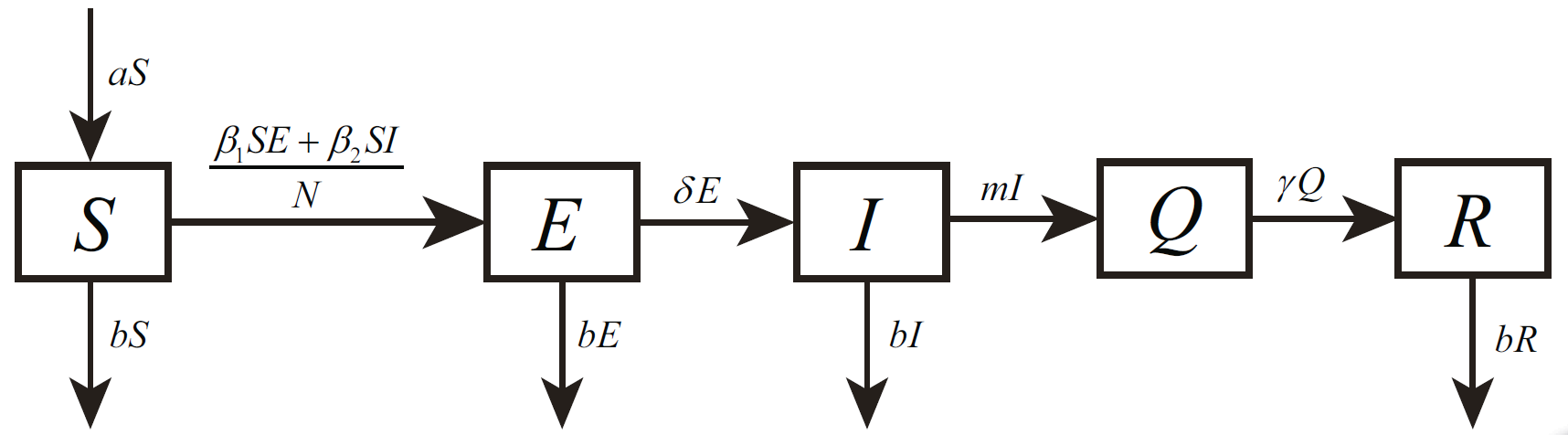 FIG. 1: Transmission diagram of COVID-19 in Wuhan before lockdown. S(t), E(t), I(t), Q(t) and R(t) represent the susceptible, exposed, infected, confirmed and removed populations.