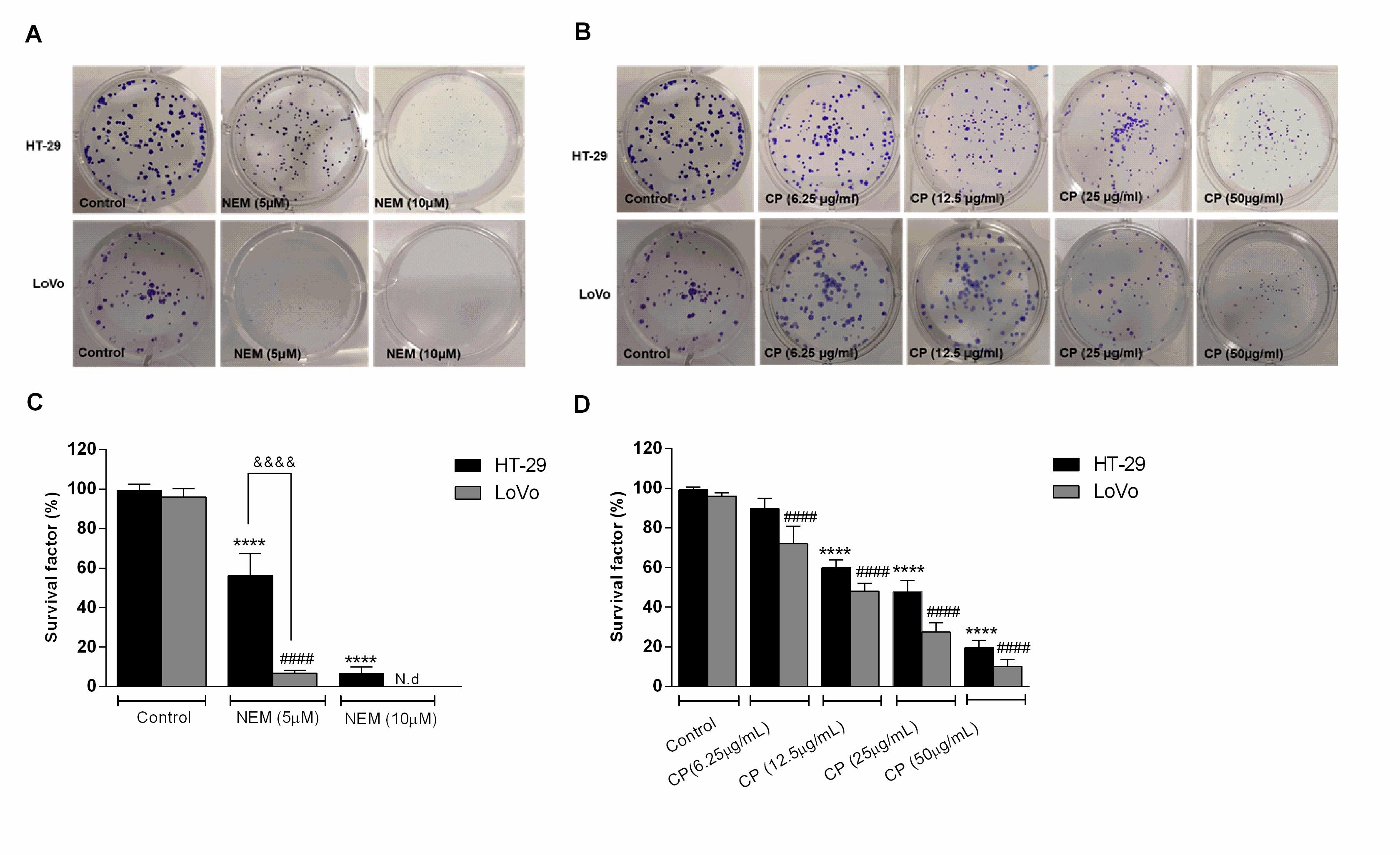 Colorectal Cancer Cells Encyclopedia
