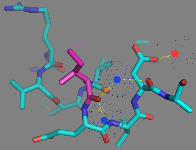 Figure S10. I200 residue surrounding and H-bonds network to the D203 residue from EF2 calcium coordinating center according to NCaMP7 X-ray structure (PDB ID - 6XW2). H-bonds network is shown as dash lines between I200 (in magenta), water molecules (in blue dots), E203 and calcium ion from EF2 (red sphere).