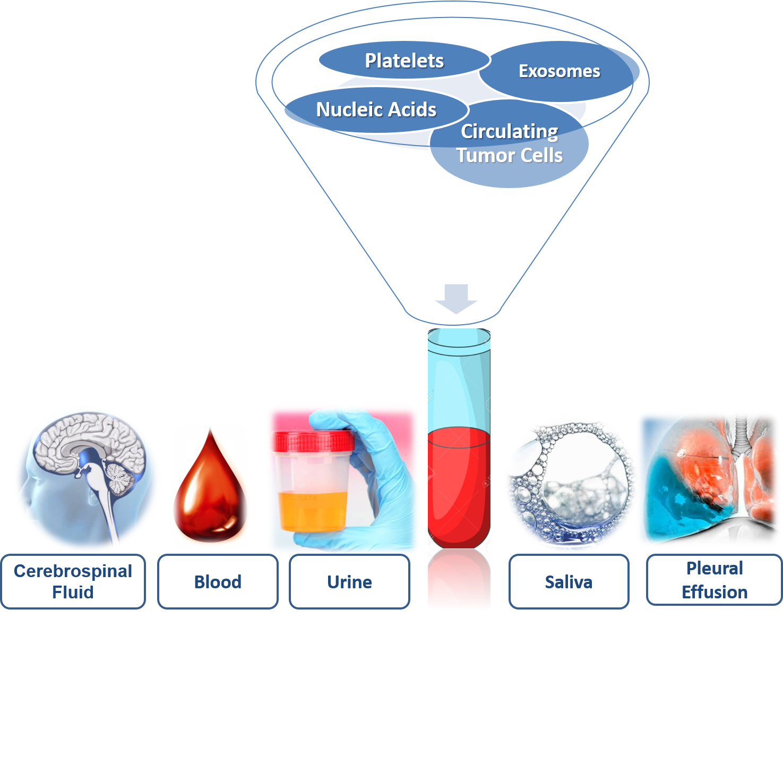 Figure 1. Components of liquid biopsy