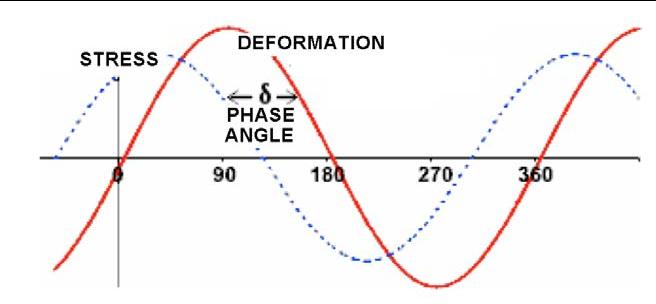 Gráfico, Gráfico radial  Descripción generada automáticamente